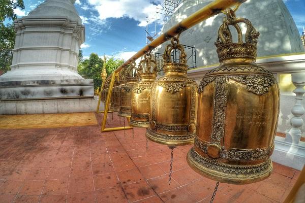 campanas cnx