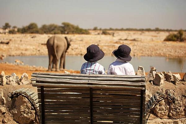 Safari con niños