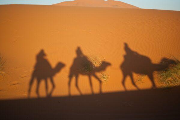 reyes magos desierto